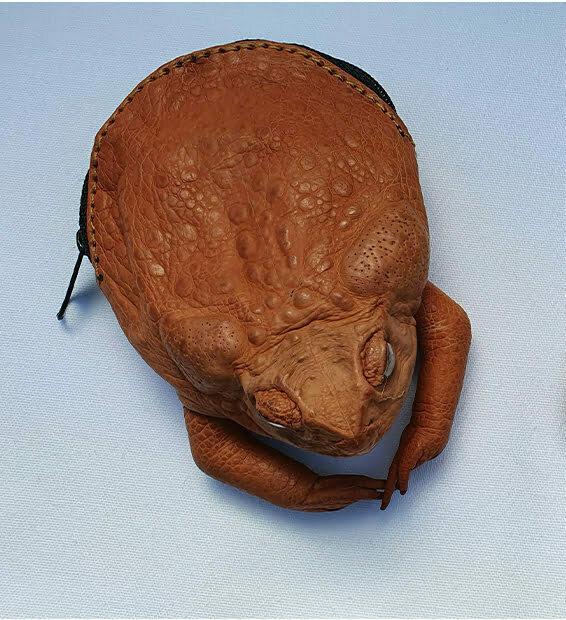 Australian Souvenirs - Cane Toad Coin Purse